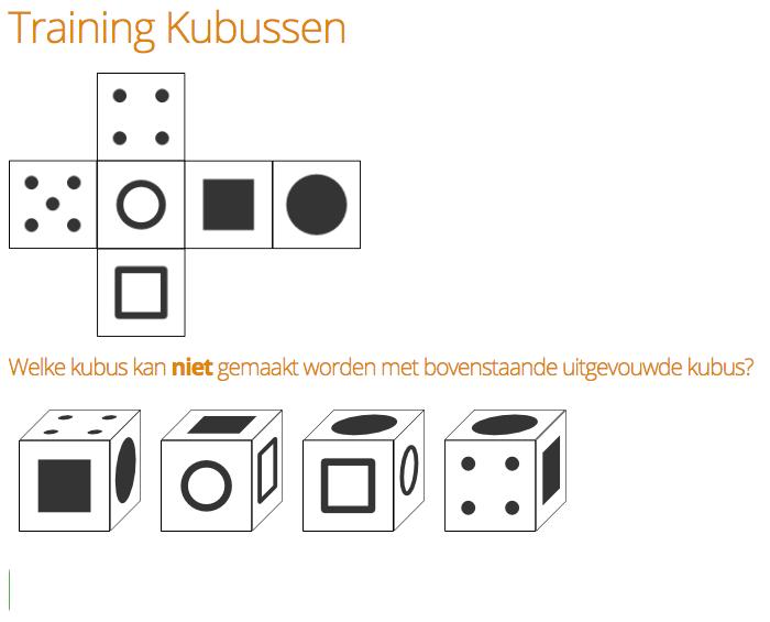 Voorbeeldvraag Kubussen