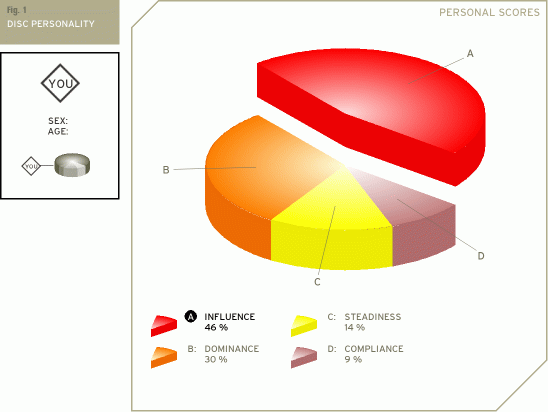 DISC personality test profile